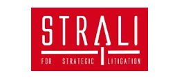StraLi for Strategic Litigation